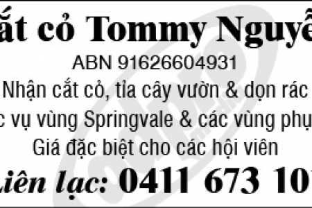 Tommy Nguyen Cắt Cây Dọn Cỏ